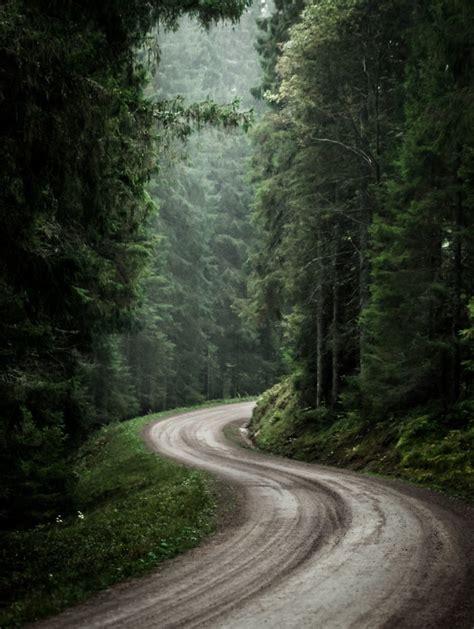 stunning swedish nature photography captured  magnus