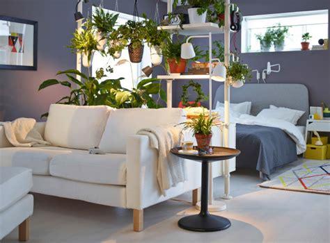 plante dans la chambre les plantes comme séparateurs