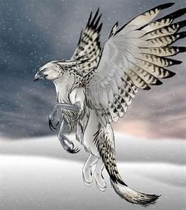 A white griffin | Fantasy | Pinterest | Search, Fantasy ...