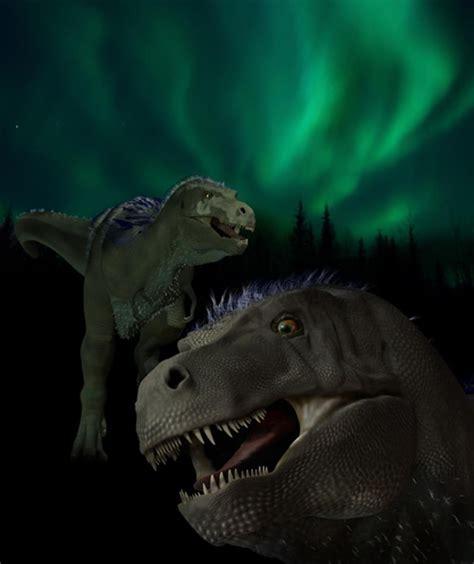 introducing nanuq  mini tyrannosaurus  alaskas