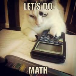 math cats math joke humor cat kitty calculator math