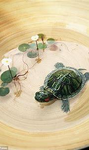 Keng Lye creates hyper realistic artworks of sea creatures ...