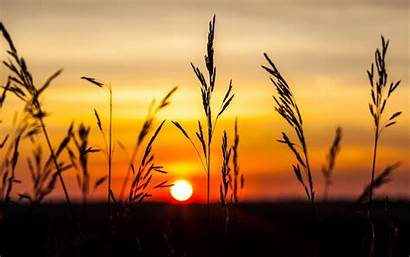Wallpapers Sunset Nature Screen Background Night Sky