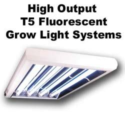 fluorescent lighting t5 fluorescent grow lights reviews