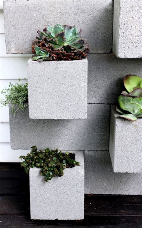 cool concrete blocks  planting succulents shelterness
