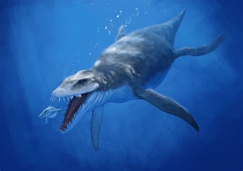 prehistoric sea creatures  thankful  extinct