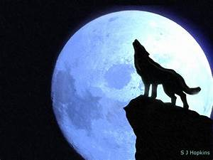 Howling at the moon by SHopkins on DeviantArt