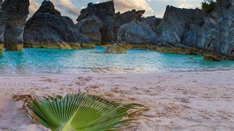 In Search Of The Best Bermuda Beach Wandering Wagars