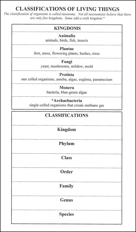 classification  living     laminated chart