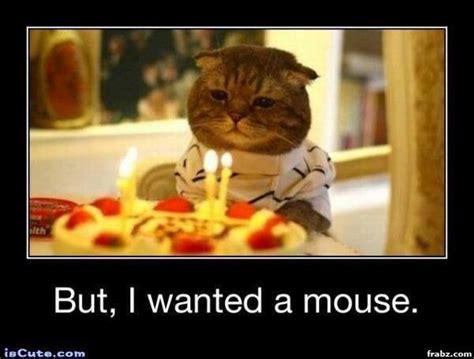 Sad Cat Meme Generator Image Memes At Relatably.com