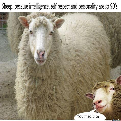 Sheep Memes - sheep by zaelkrie meme center