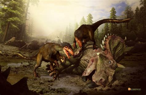 Paleontologists Discover New