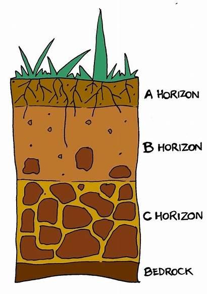 Soil Layers Clipart Example Soils Suolo Scienza