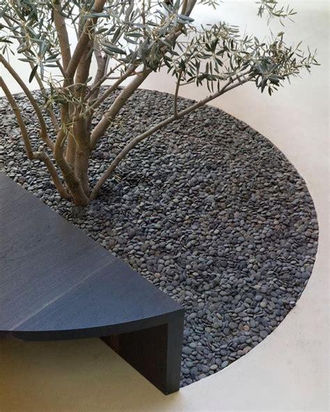 Gartenideen Mit Kies by Gartenideen Kies Olivenbaum Beton Sitzbank Garten Ideen