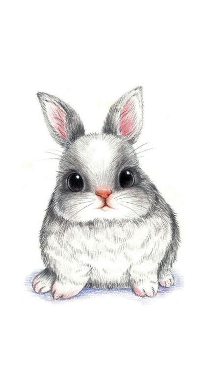 iphone wallpaper bunny tumblr
