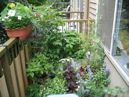 Permaculture For Urban Homes And Small Spaces These
