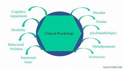 Psychology Essay Branches Mind Major Universe Theories
