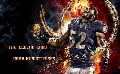 Lewis Ray Wallpapers Ravens Baltimore Background Screensavers