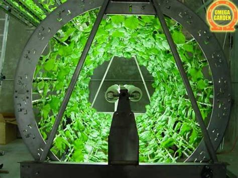 hydroponic system omega garden volksgarden