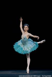 ballet | Ballet Blossom