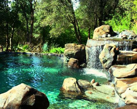 Swimming Pond : Natural Swimming Pools Ideas To Create A Cooling Summer
