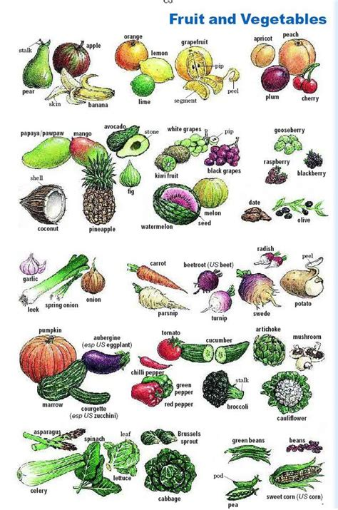 Fruit And Vegetables  Enkun Alkeet  Pinterest  English, English Vocabulary And Learning English