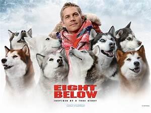 In Memory Of Paul Walker, Eight Below movie star ...