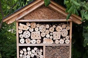 Bienenhaus Selber Bauen : insektenhotel insektenschutz naturschutz f r jeden garten ~ Lizthompson.info Haus und Dekorationen