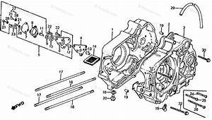 Honda Motorcycle 1981 Oem Parts Diagram For Crankcase