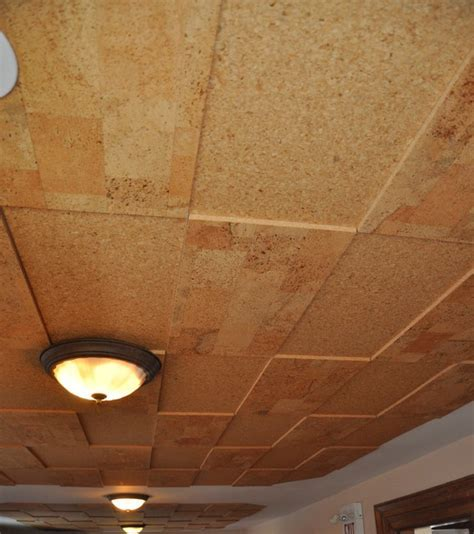 Jelinek Cork Walls & Ceilings   Contemporary   Toronto