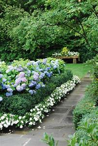 Captivating, Hydrangea, Flower, Beds, That, Will, Beautify, Your
