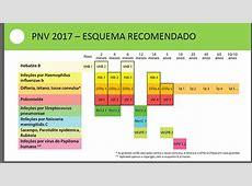 PROGRAMA NACIONAL DE VACINAÇÃO – 2017 – Futuros Enfermeiros
