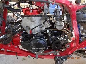 1986 Honda Trx250r Wiring