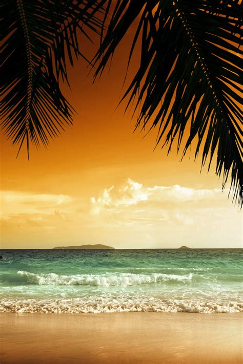 tropical paradise iphone wallpaper hd