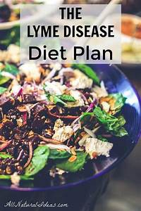 Lyme Disease Diet Plan and Restrictions   All Natural Ideas