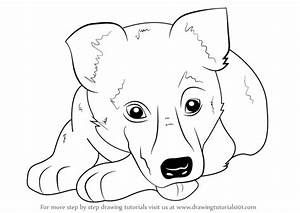 Learn How To Draw German Shepherd Puppy Farm Animals