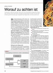 Immobilienkaufvertrag Worauf Achten : urolithiasis worauf zu achten ist ~ Lizthompson.info Haus und Dekorationen