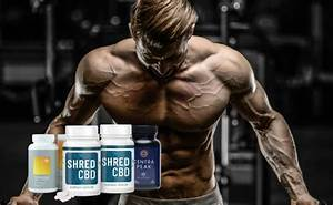 Review  Best New Bodybuilding Supplements 2020