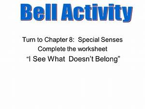 Bell Activity Turn to Chapter 8: Special Senses Complete ...