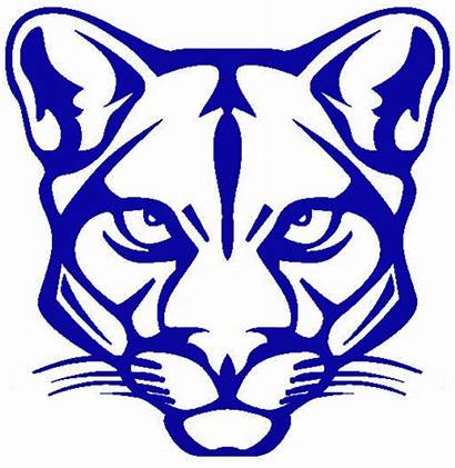 Cougar Beaumont Clipart Logos Football Clip Panther