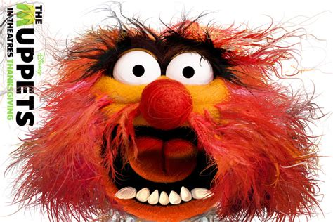 quotes   muppets animal quotesgram