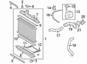 Toyota Camry Radiator Air Seal  Make  Lower