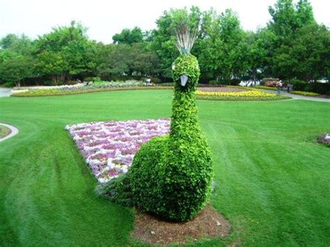 15 Amazing Ideas Of Topiary Art For Your Garden