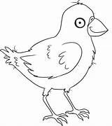 Crow Coloring Pages Cartoon Printable Step Animal Draw Birds Animals Coloringpages101 Bird Sheets sketch template