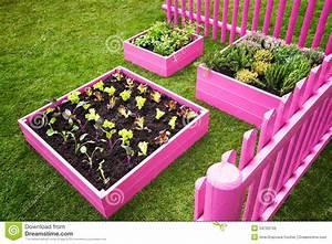 Petit Jardin Aromatique – Idées d'images à la maison