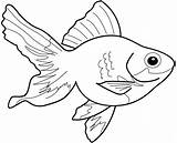 Goldfish Coloring Printable Pages Getcolorings Japanese sketch template