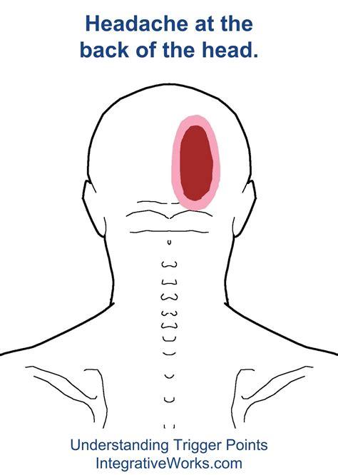 Diagram Of Right Rear Molar by Pin On Reflexology