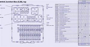 Schematic Volt  Central Junction Fuse Panel Diagram Of 2004 Ford Focus Zxw