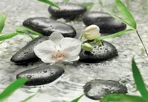 Bilder Feng Shui : fototapete pure 368x254 feng shui weisse orchidee steine wasser schwarze kiesel ebay ~ Sanjose-hotels-ca.com Haus und Dekorationen