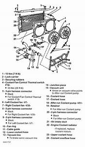 1997 Volkswagen Eurovan Serpentine Belt Routing And Timing